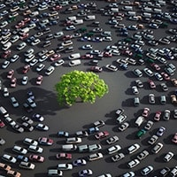 Hundreds of cars parked in a circle around a tree.