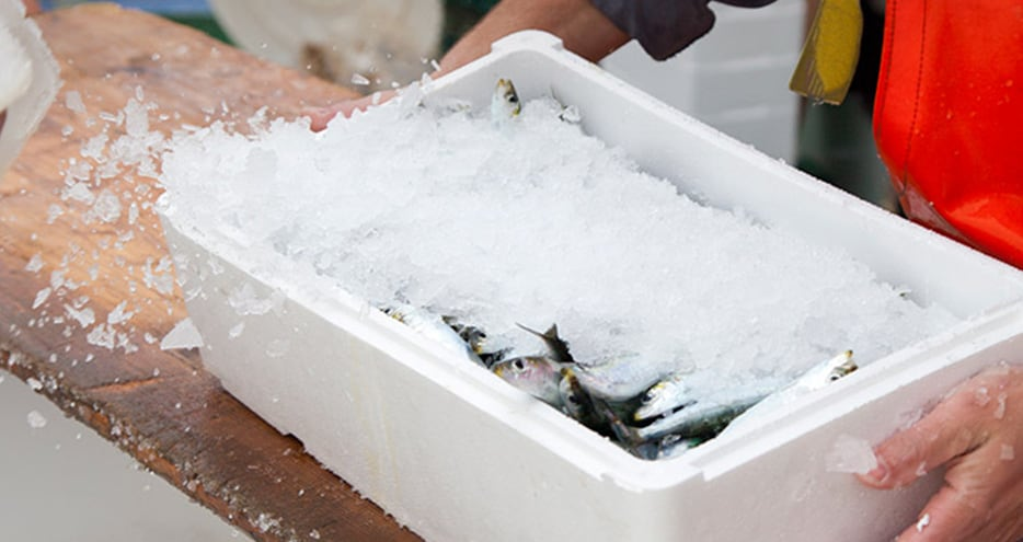 Seafood being prepared for shipping