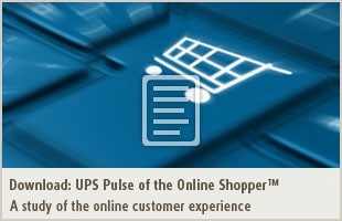 A study of the online customer