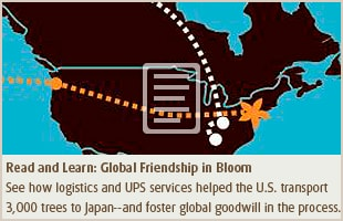 Friendship Blossom Case Study