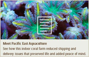 Meet Pacific East Aquaculture