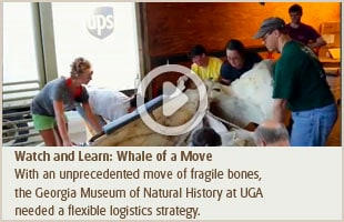 Watch and Learn: Whale of a Move