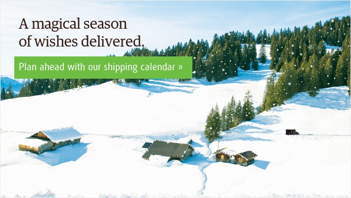UPS 2016 Holiday Banner