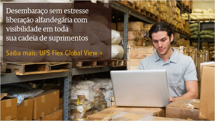 Learn about UPS Flex Global View